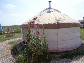 Yourtes Charentaises - yourte du pêcheur - Salignac-sur-Charente vacation rentals