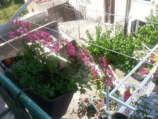 Heart of Split - Antonia Apartments - Split vacation rentals