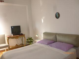 la tua oasi verde lungo l' Arno - Florence vacation rentals