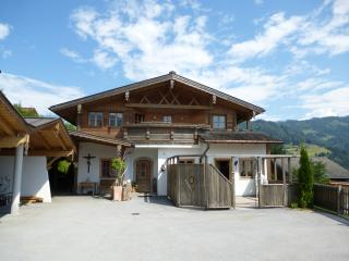 Charming 13 bedroom Muhlbach am Hochkonig Apartment with Deck - Muhlbach am Hochkonig vacation rentals