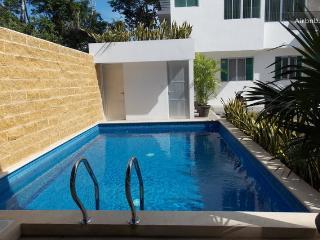 Condo Mabel 2 bed/2 bath with pool! - Playa del Carmen vacation rentals