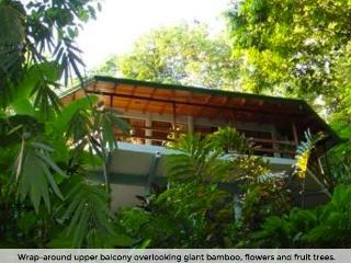 Exotic Escape Rainforest Home - Quepos vacation rentals