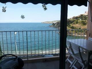 Les Elmes Les Pieds dans l'eau - Banyuls-sur-mer vacation rentals