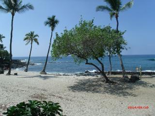 GREAT OCEAN VIEW AND WONDERFUL LOCATION! - Kailua-Kona vacation rentals