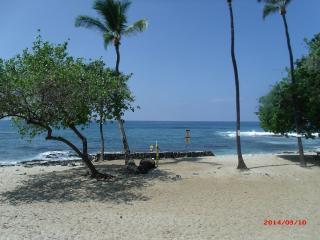 Convenient Condo with Internet Access and A/C - Kailua-Kona vacation rentals