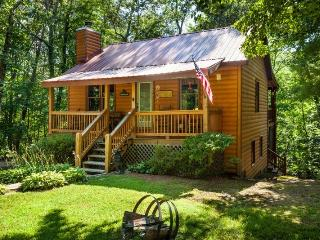 Bear`s Den -Cozy, All Paved Access, Convenient to Ellijay and Blue Ridge - Ellijay vacation rentals