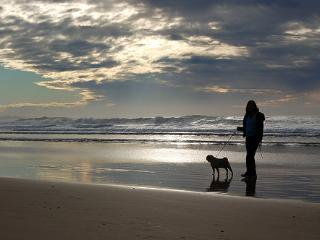 Pet Friendly 400m to Narrawallee Beach - Narrawallee vacation rentals