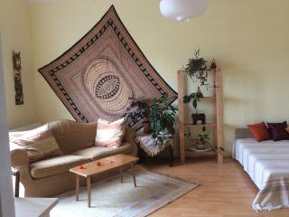 Sunny affordable flatwith balcony - Budapest vacation rentals