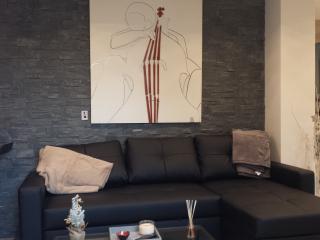 Maison 2 pièces avec jardin privatif de 700 M2 - Pontoise vacation rentals