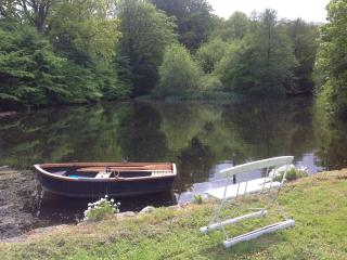 Old watermill by beautiful lake - Vejstrup vacation rentals