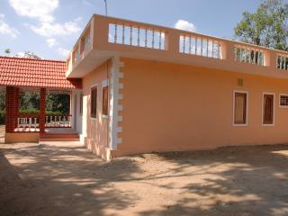 Nice Cottage with Washing Machine and Porch - Valparai vacation rentals