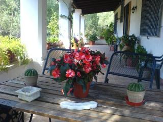 1 bedroom Villa with Balcony in Poggiardo - Poggiardo vacation rentals
