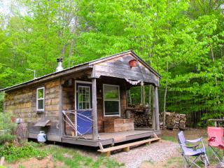 Harmony Eco Cabin - Denmark vacation rentals
