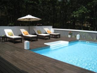 Avail Labor Day-Striking 4 Bed & Pool in Near NW! - East Hampton vacation rentals