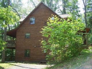 Red Maple Ridge - Sevierville vacation rentals