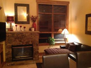 Elegant condo great location - Edwards vacation rentals