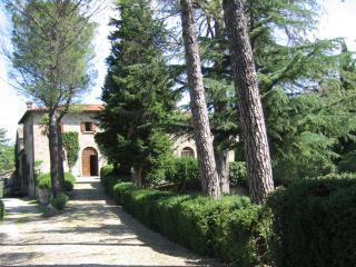 Villa Badicroce - Code: AC0009 - Palazzo del Pero vacation rentals