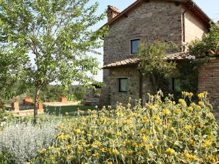 Villa Il Conventino - Code: CC0001 - San Casciano vacation rentals