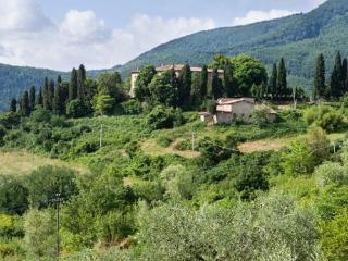 Beautiful 4 bedroom Villa in Compiobbi - Compiobbi vacation rentals
