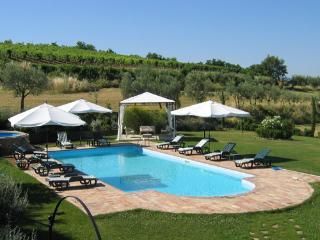 Villa Podere I Limoni - Code: AC0005 - Donnini vacation rentals