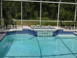 The Villa on the Lakes - Orlando vacation rentals