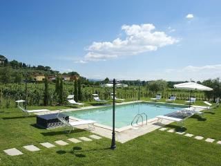 Farmhouse , pool, 13 px. Lucca 10km - San Ginese vacation rentals