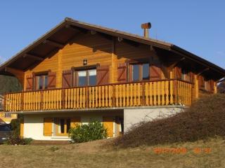 Chalet scandinave près Gérardmer Vosges proche Als - Xonrupt-Longemer vacation rentals