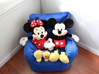 Disney's Happiest Home - Anaheim vacation rentals