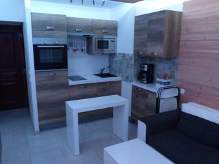 Location appartement Briançon Serre Chevalier - Villar-Saint-Pancrace vacation rentals
