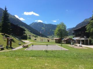 1½- Zimmer-Apartment, Allmiried, Wiriehorn - Zweisimmen vacation rentals
