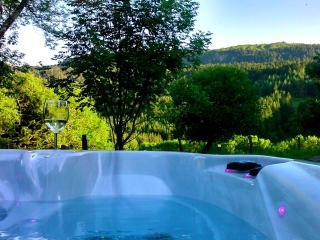 LODGE DE SAGNOVE, pour un séjour à 2 en Auvergne - Le Mont-Dore vacation rentals