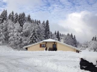 Sapin Gîte à la montagne, proche de la ferme - Les Molunes vacation rentals