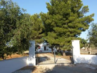 Nice Villa with Deck and Dishwasher - Galatone vacation rentals
