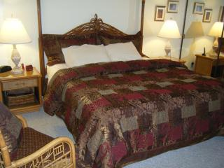 Nice Condo with Internet Access and Dishwasher - Kapalua vacation rentals