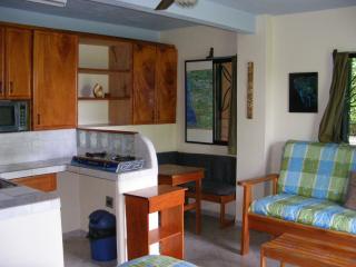 """Buena Vista Villas - Villa 7 """"Suenos del Mar"""" - Nosara vacation rentals"""