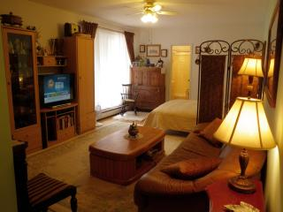 Nice Studio in luxury building. - Great Neck vacation rentals