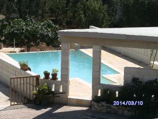 Country Villa, infinity pool&garden - Ceglie Messapica vacation rentals