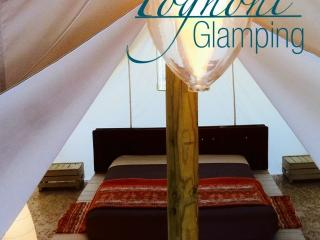 Agricampeggio Tognoni -Agricamping&Glamping - Populonia vacation rentals