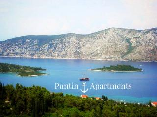 Puntin Apartments II. - Little sunny paradise - Kneza vacation rentals