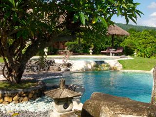 Nice Villa with Internet Access and A/C - Lovina vacation rentals