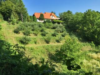 Beautiful Farmhouse Barn with Internet Access and Dishwasher - Ptuj vacation rentals