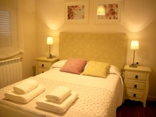 Charming and central apartment - Salamanca vacation rentals