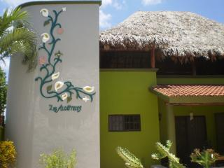 Relax & Recharge As You Experience the Real Cozumel - Cozumel vacation rentals