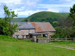 Tredomen cottage - Crickhowell vacation rentals