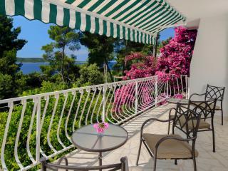 Villa Tamara AP2 Sea View Hvar - Zavala vacation rentals