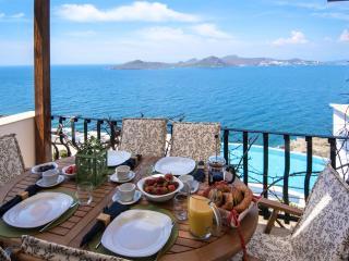 Aegean Infinity - Yalikavak vacation rentals