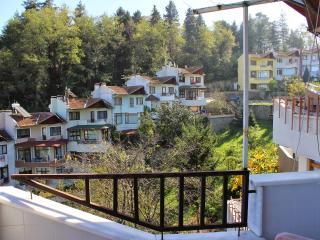 Gurgen Villa - Trabzon vacation rentals
