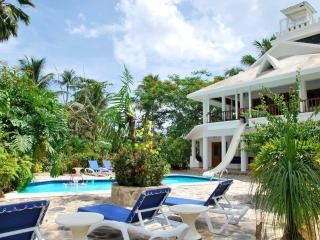 A beautiful villa  in  a lush tropical garden - Las Terrenas vacation rentals