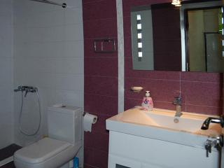 Romantic 1 bedroom Yerevan Apartment with Internet Access - Yerevan vacation rentals