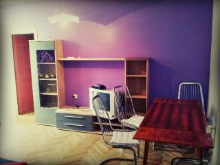 Romantic 1 bedroom Condo in Zadar - Zadar vacation rentals